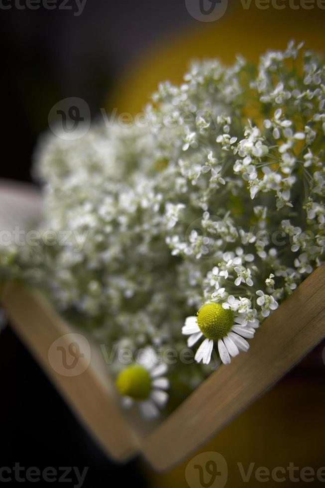 close-up de um livro aberto com flores silvestres. foto