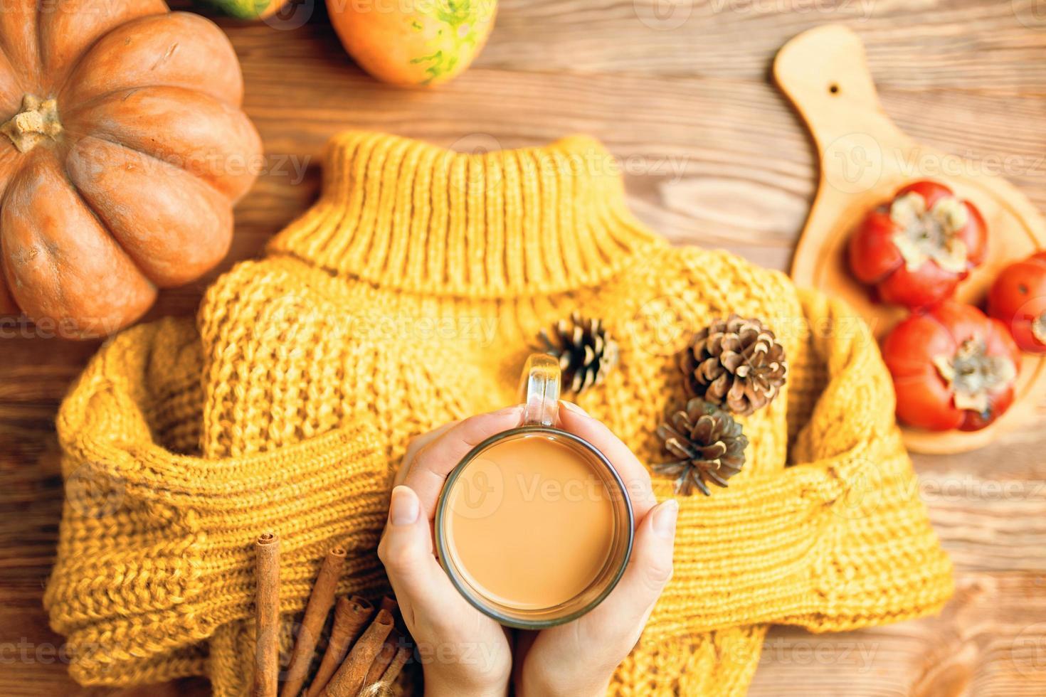 chocolate quente nas mãos, pinhas e paus de canela no suéter de malha. foto