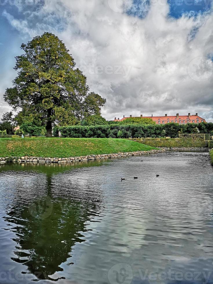 parque natural copenaghen com árvore refletida no lago foto