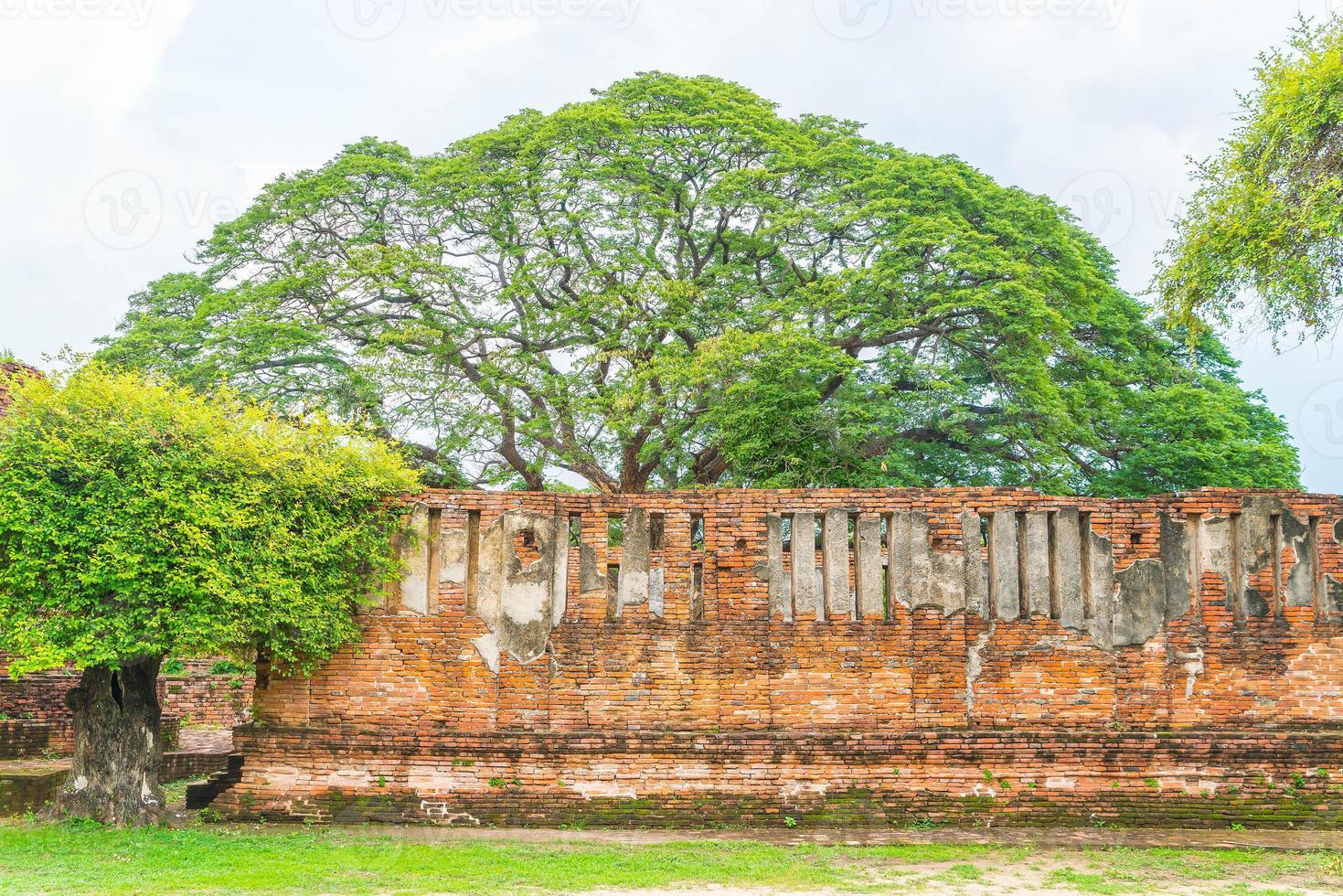 bela arquitetura antiga histórica de Ayutthaya na Tailândia - impulsione o estilo de processamento de cores foto
