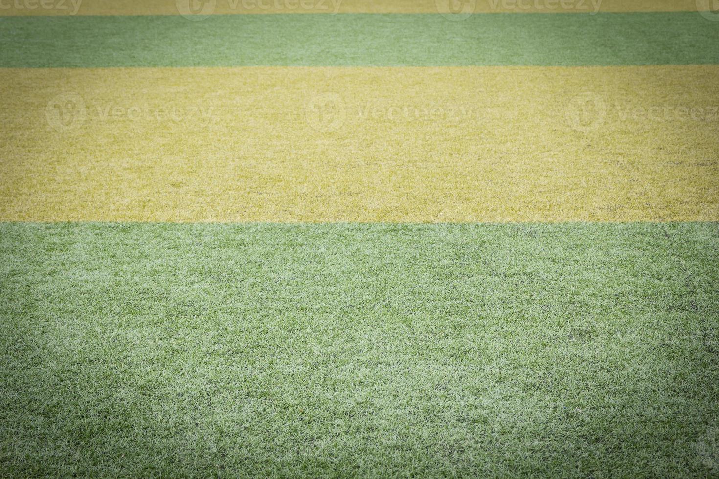 fundo de campo de grama verde foto