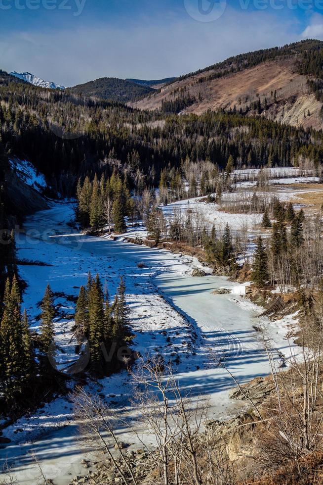 inverno e bétulas no parque no parque provincial de seep River foto