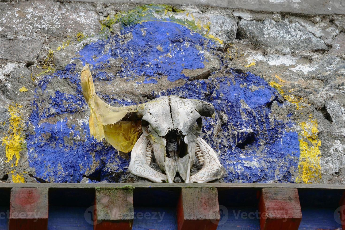 crânio de cabeça de animal em templo budista tibetano, laji shan qinghai china foto