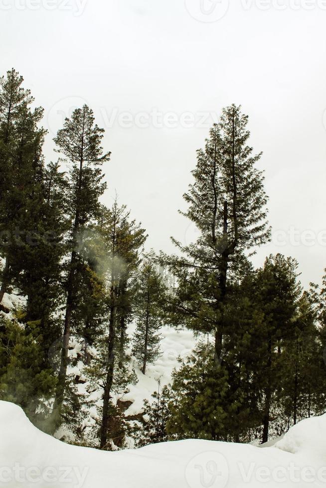 malam jabba e kalam swat paisagem paisagem foto