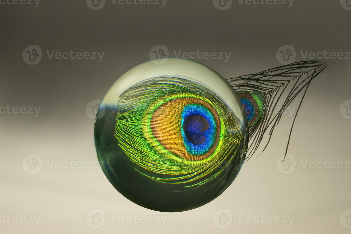 reflexão de penas de pavão em uma esfera de vidro foto
