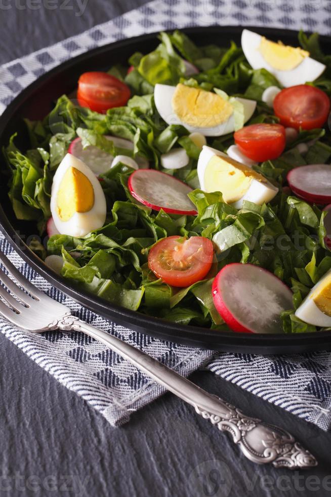 salada de ovos, rabanetes e azeda close-up vertical foto