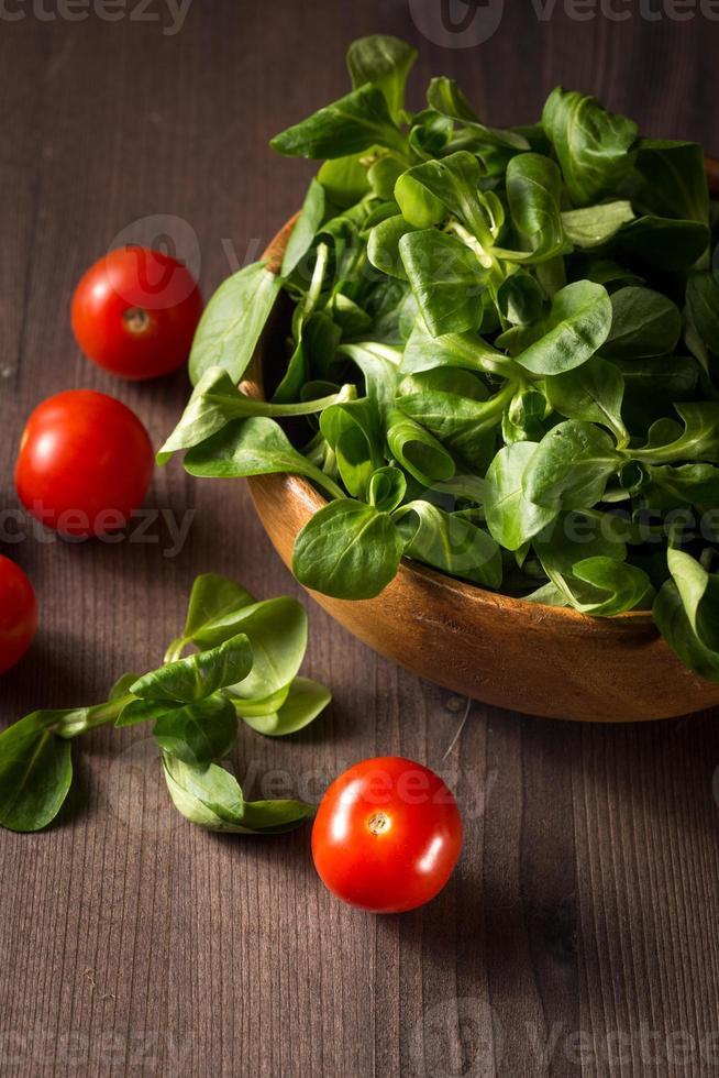 salada de campo foto