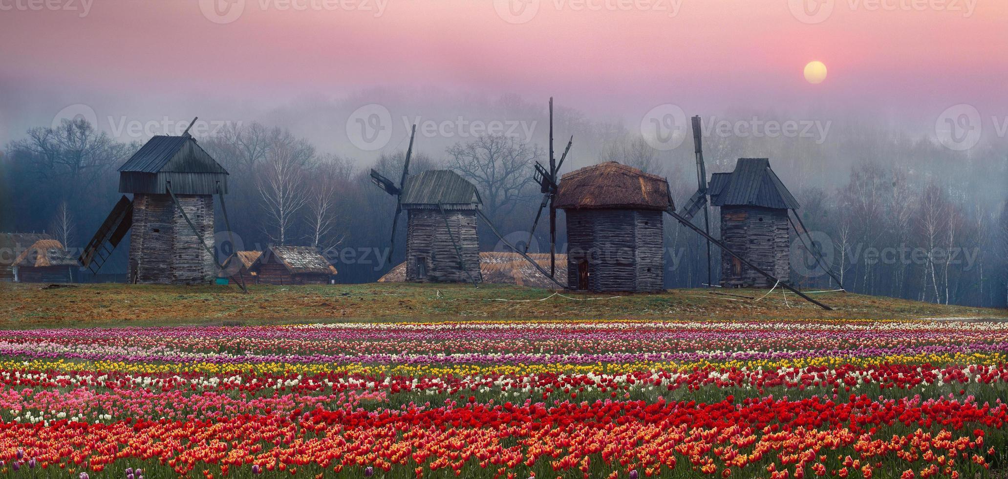 moinho de vento de madeira foto