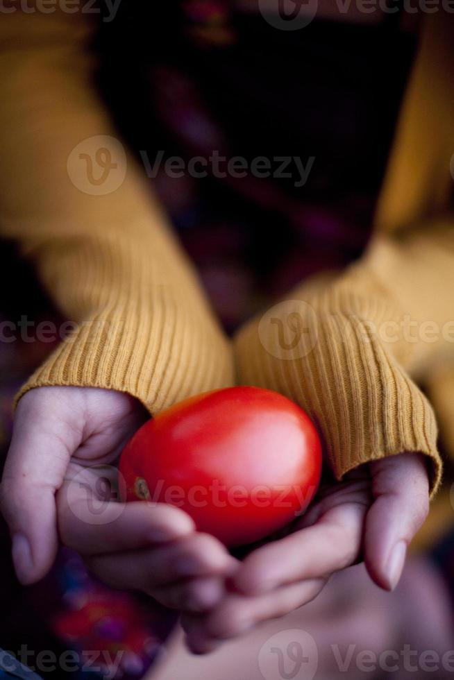 segurando tomate foto