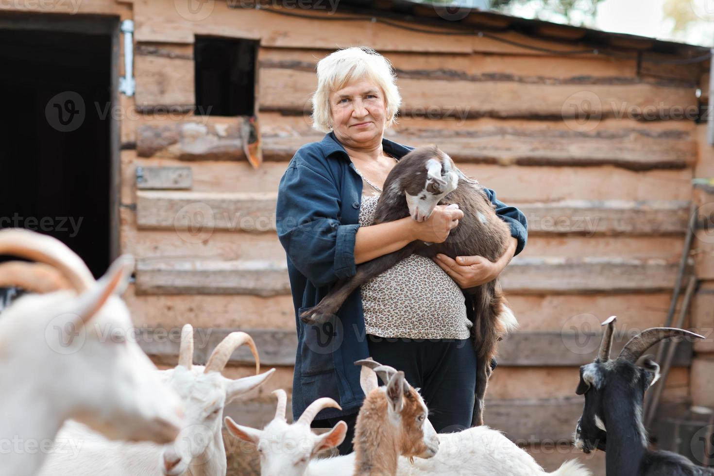 mulher agricultora com cabras foto