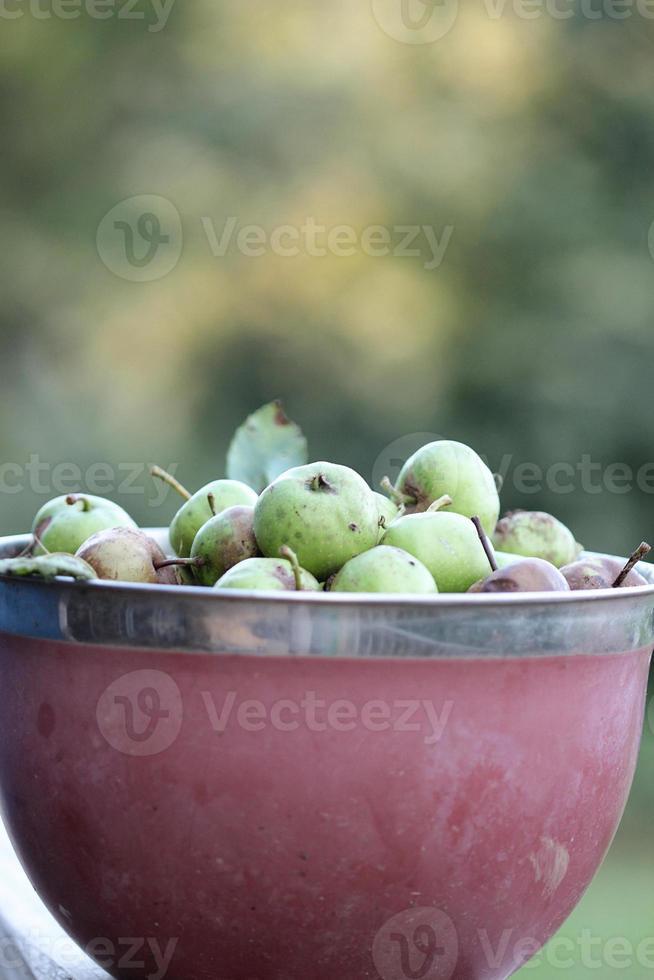 maçãs de herança verde em uma tigela com fundo foto