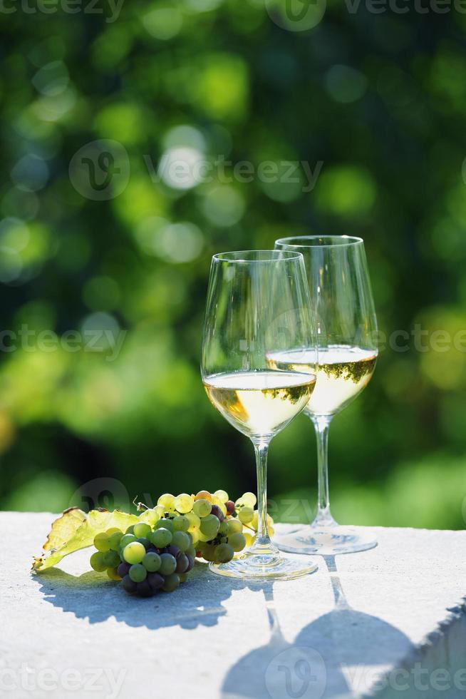 dois copos de vinho branco em vinhedo foto