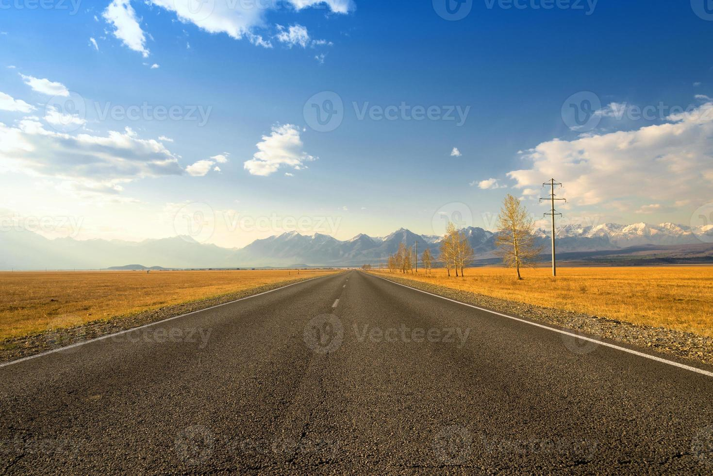 estrada. foto