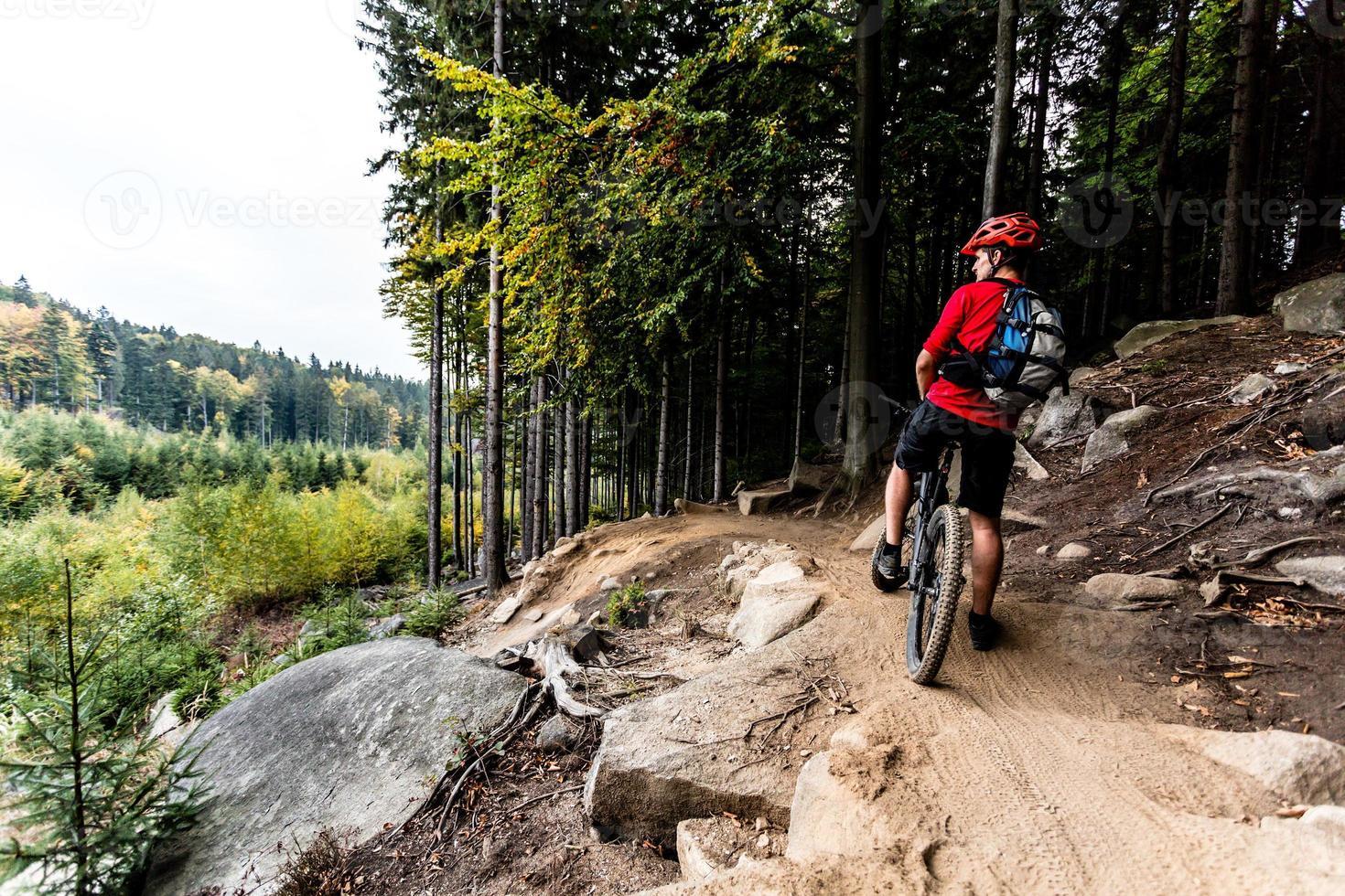 motociclista da montanha andando de bicicleta na trilha da floresta de outono foto