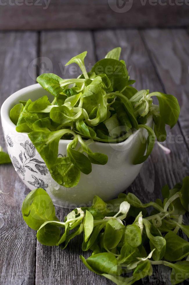 salada verde fresca com espinafre foto