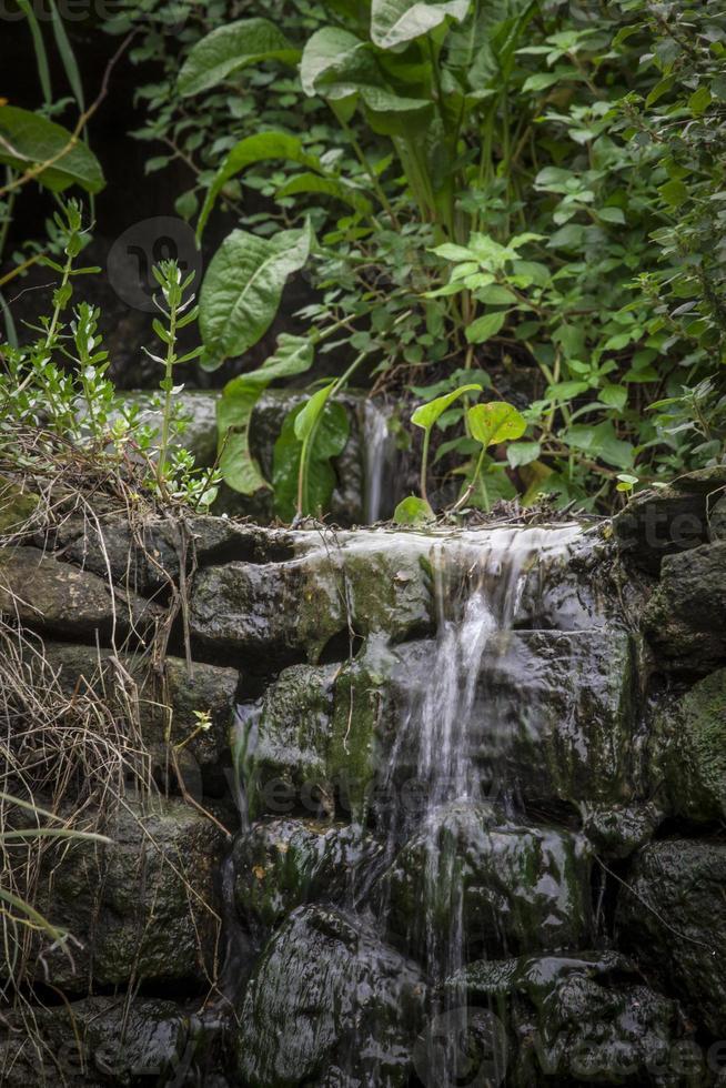água de nascente natural foto