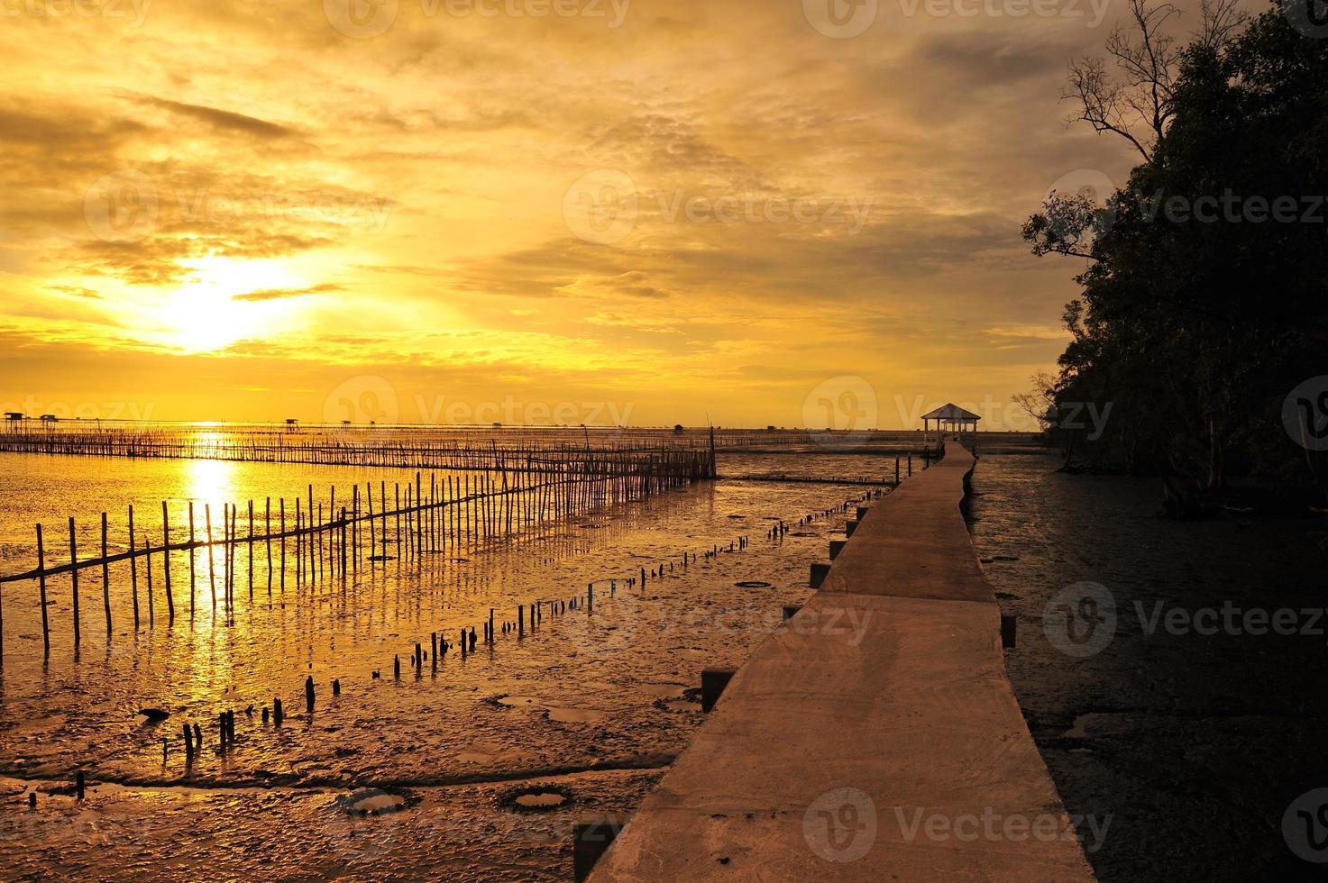 paisagem à beira-mar ao nascer do sol foto