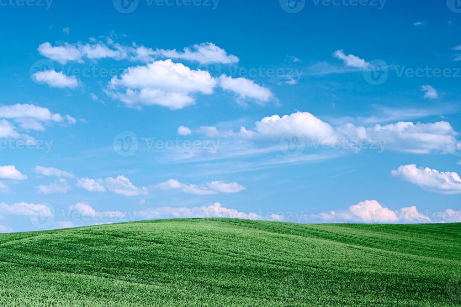 paisagem primavera foto