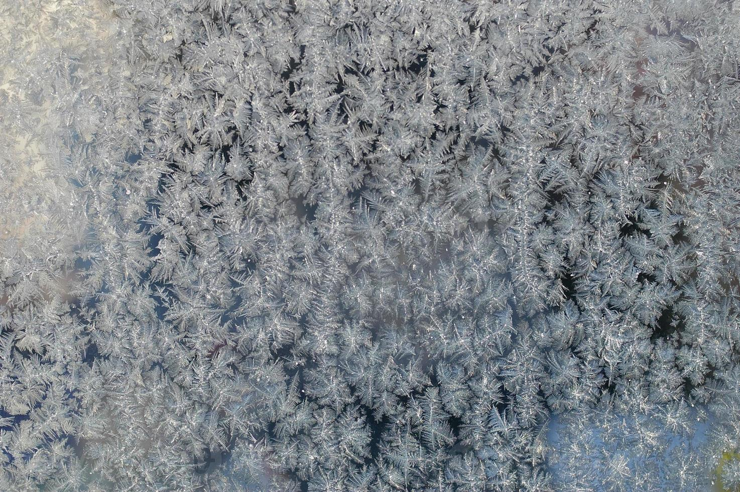 natal natal inverno foto