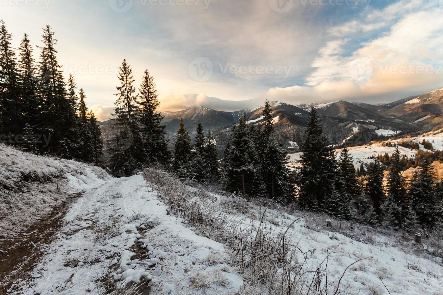 bela paisagem de inverno nas montanhas foto