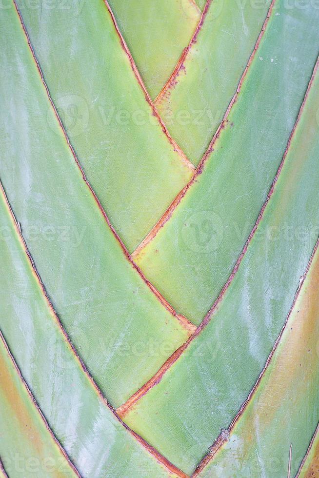 haste de banana sopra textura de fundo foto