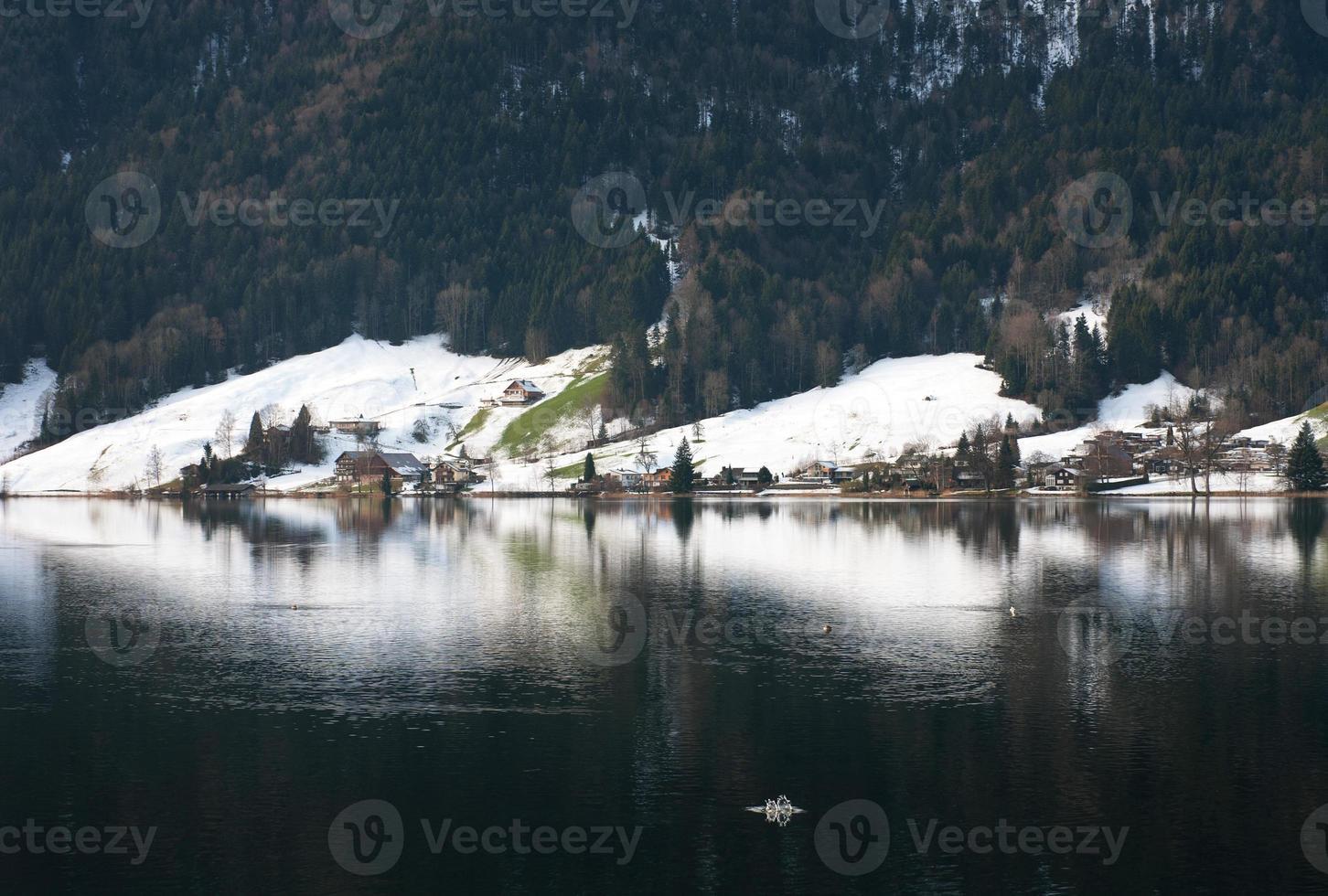 cena do lago, suíça foto