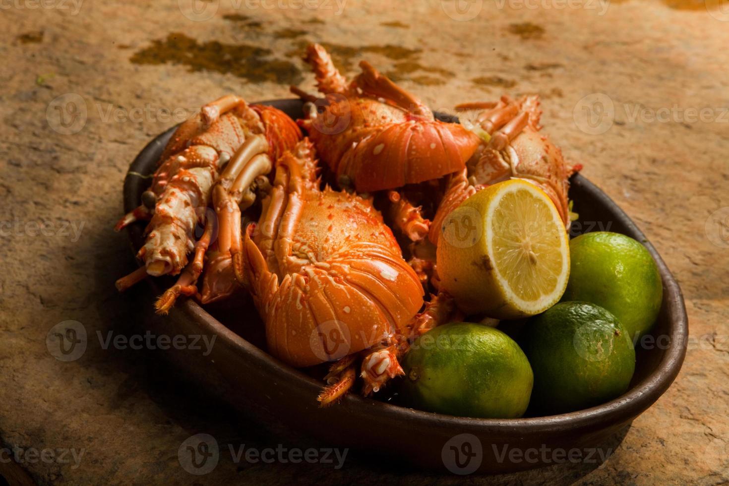lagosta foto