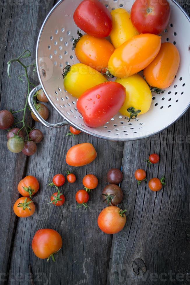 tomates em cima da mesa de madeira velha. tomates coloridos foto