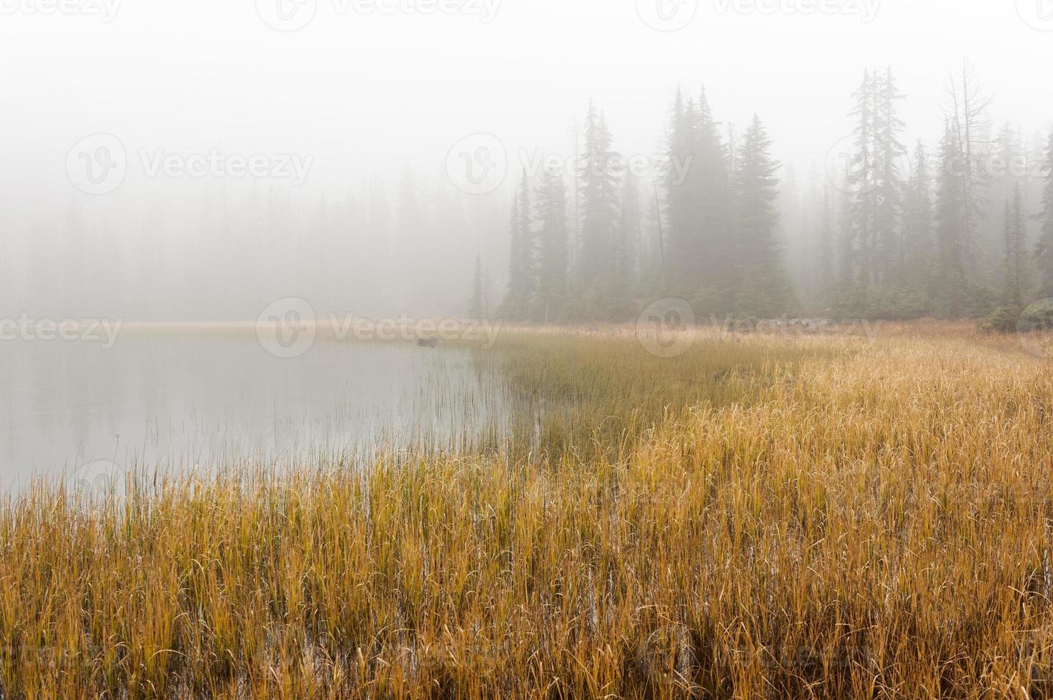 lago cruel no meio do nevoeiro foto