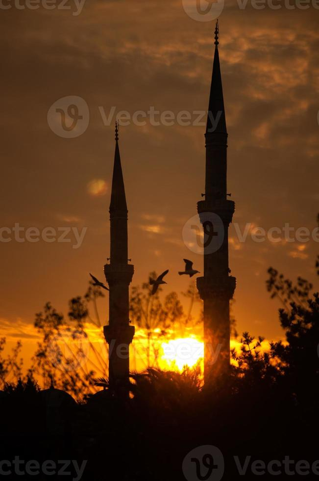 minarete foto