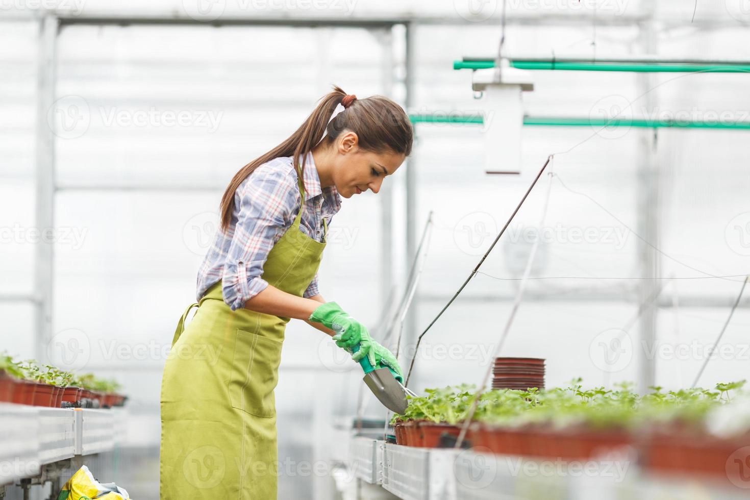 jovem botânico feminino foto
