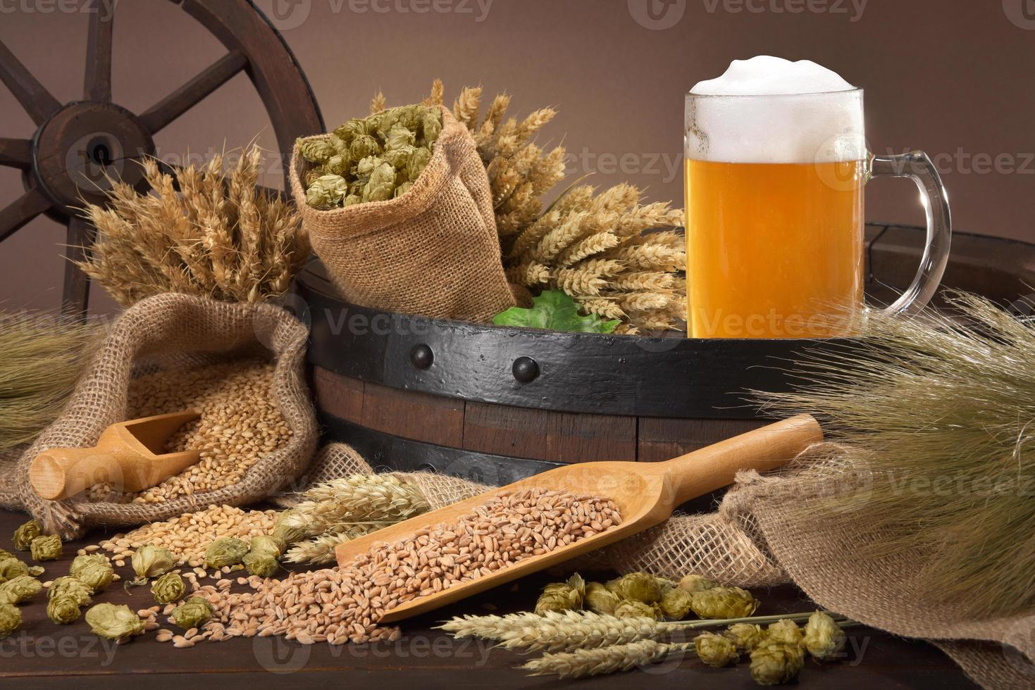 ingredientes da cerveja foto