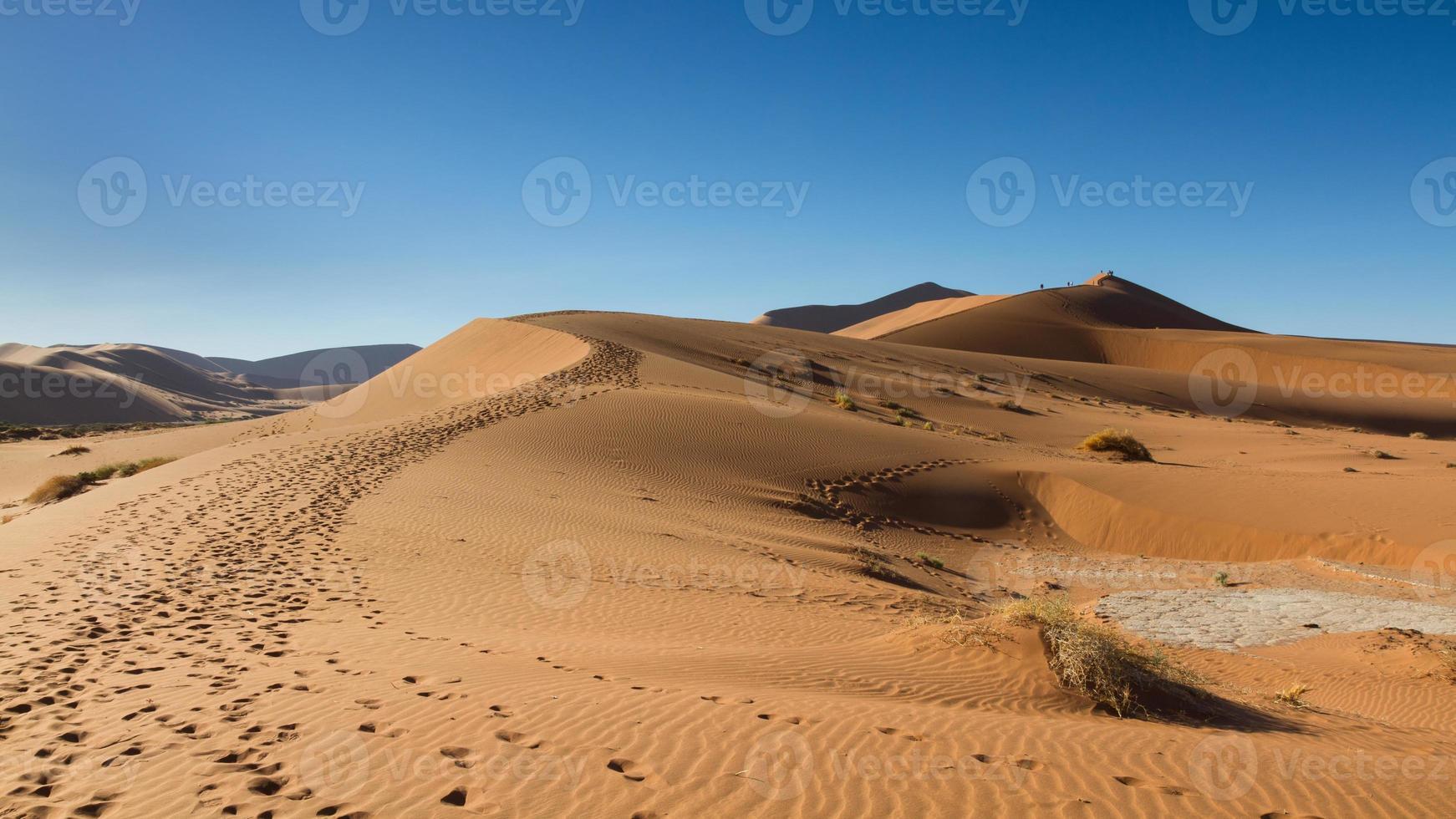 caminho na duna de areia foto