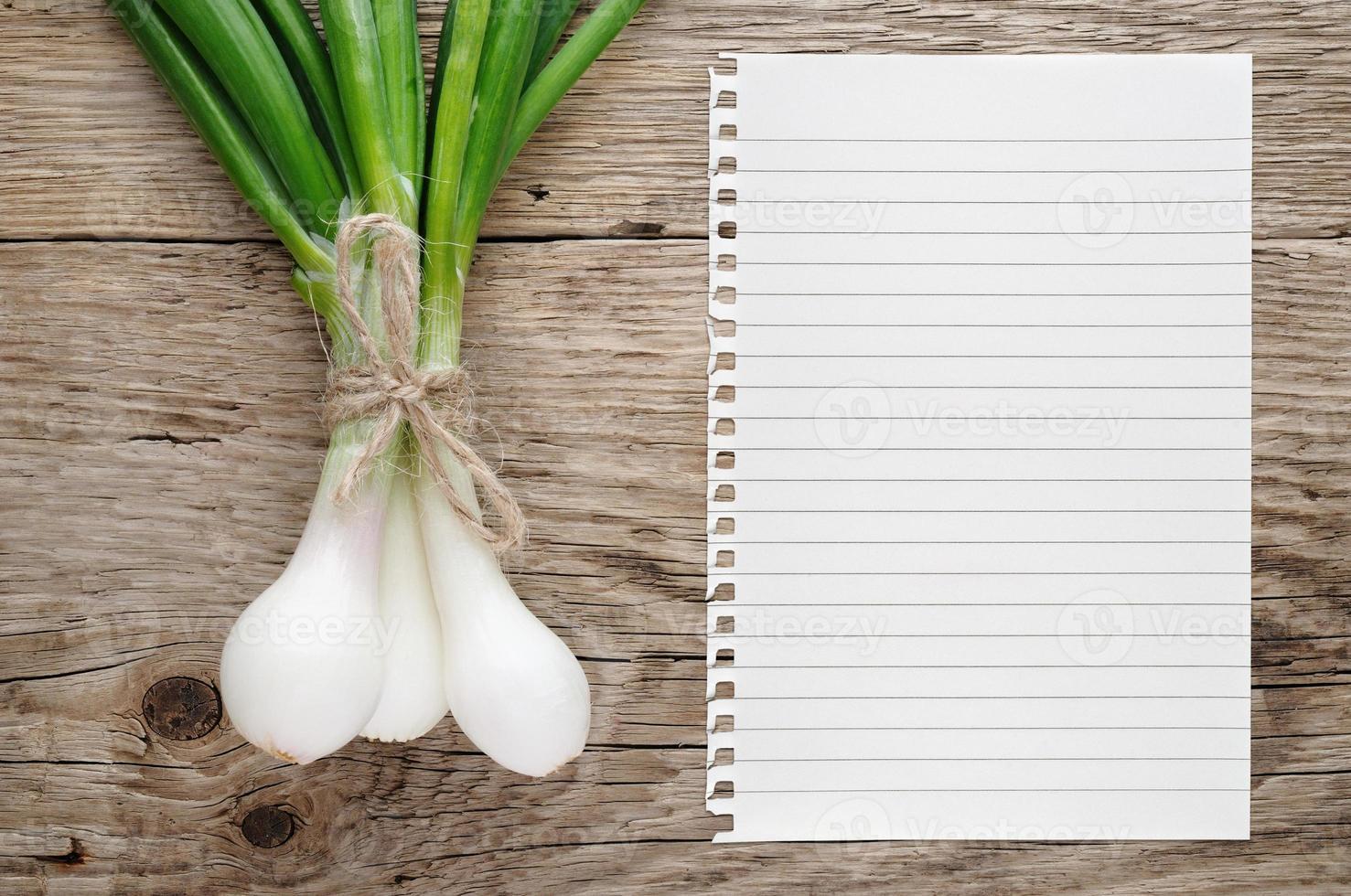 cebola verde e papel para receita foto