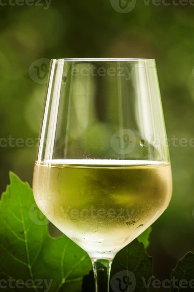 vinho branco e uvas verdes no fundo desfocado natural foto