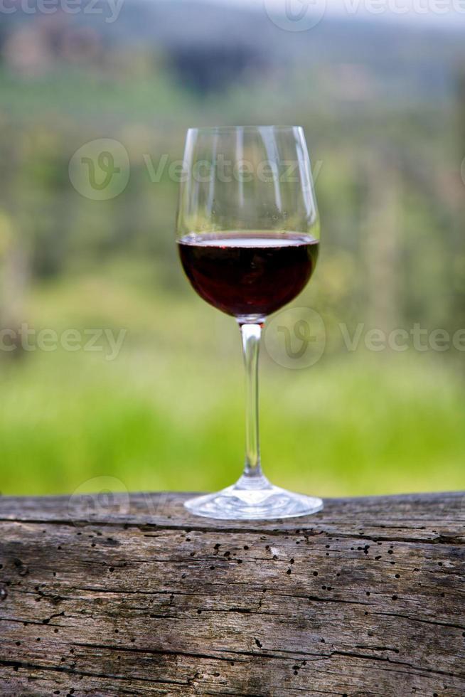 vinho tinto em um copo foto