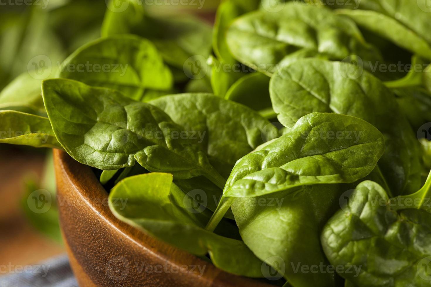 espinafre orgânico verde cru bebê foto