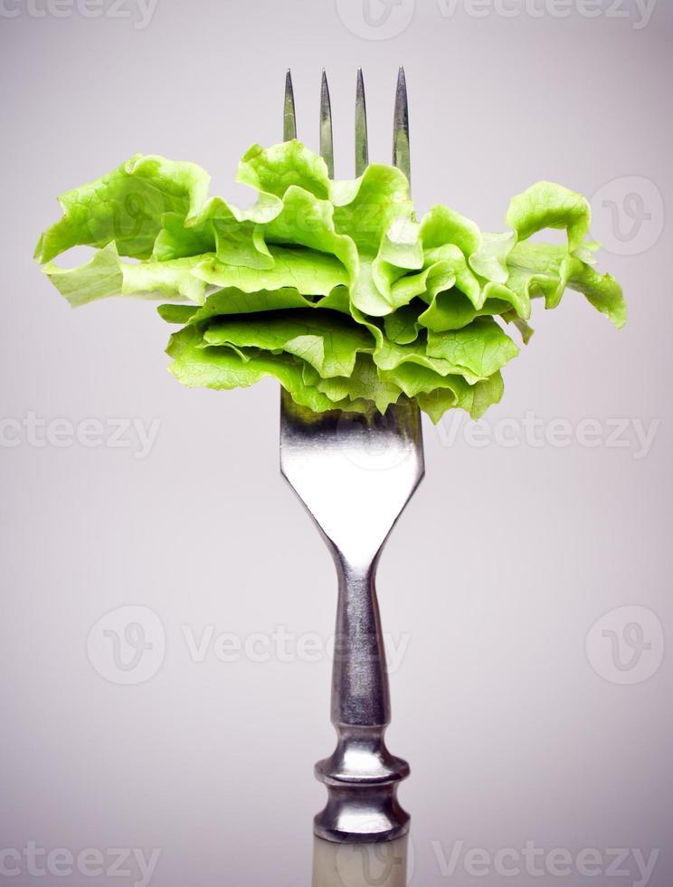 salada de alface verde fresca foto