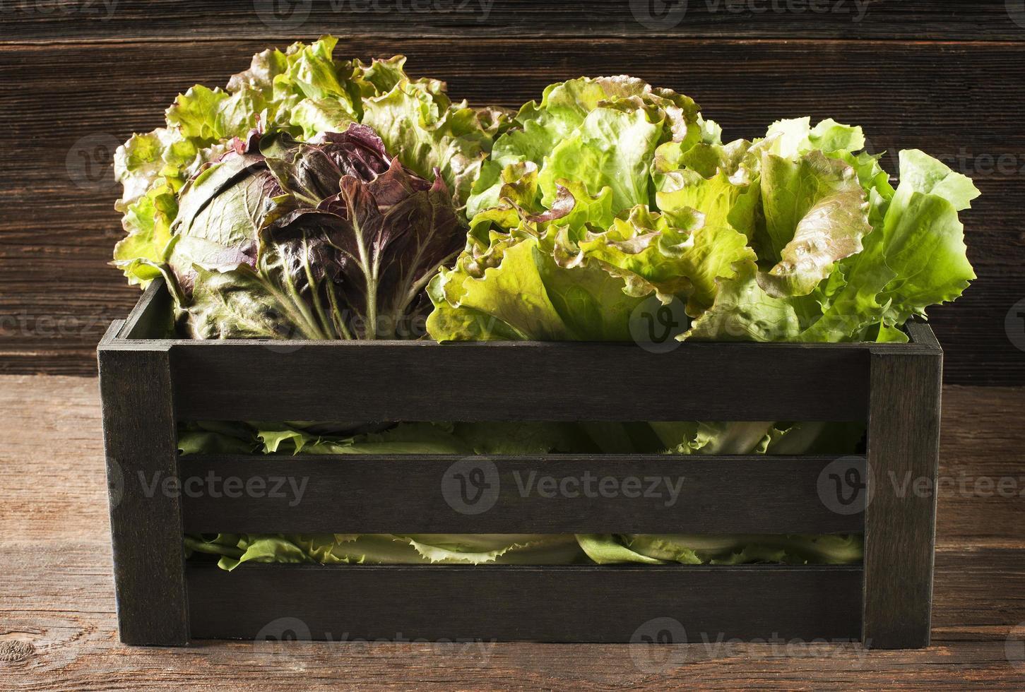 salada na caixa foto