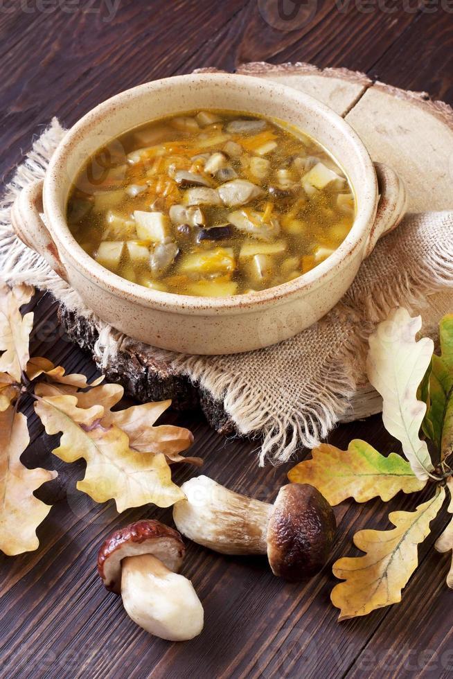 sopa de cogumelos em uma tigela de cerâmica foto