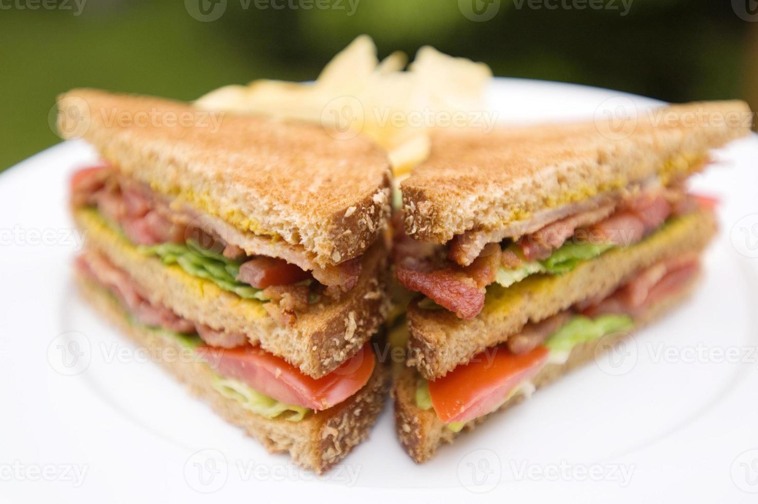 pão de trigo blt foto