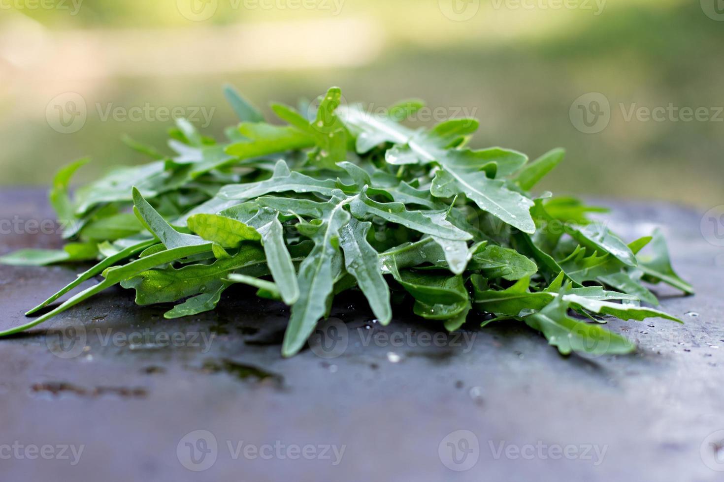 folhas de rúcula fresca. foto