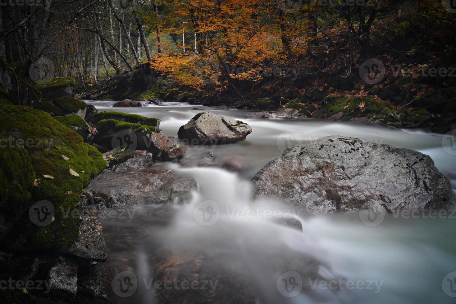 rio no outono foto