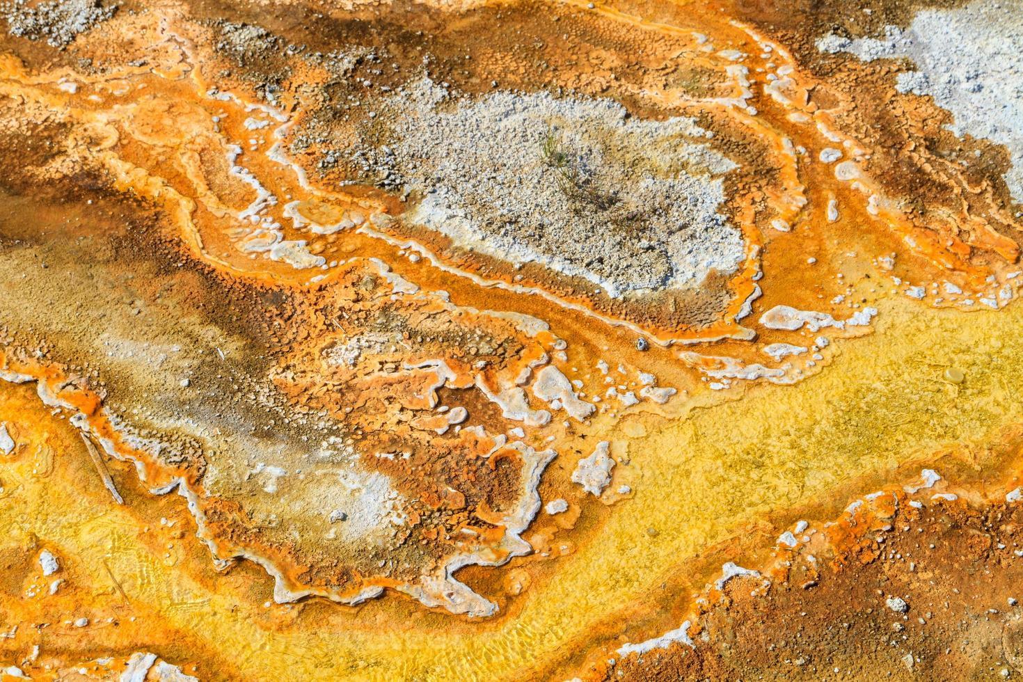 tapetes microbianos em piscinas geotérmicas, parque nacional de yellowstone foto