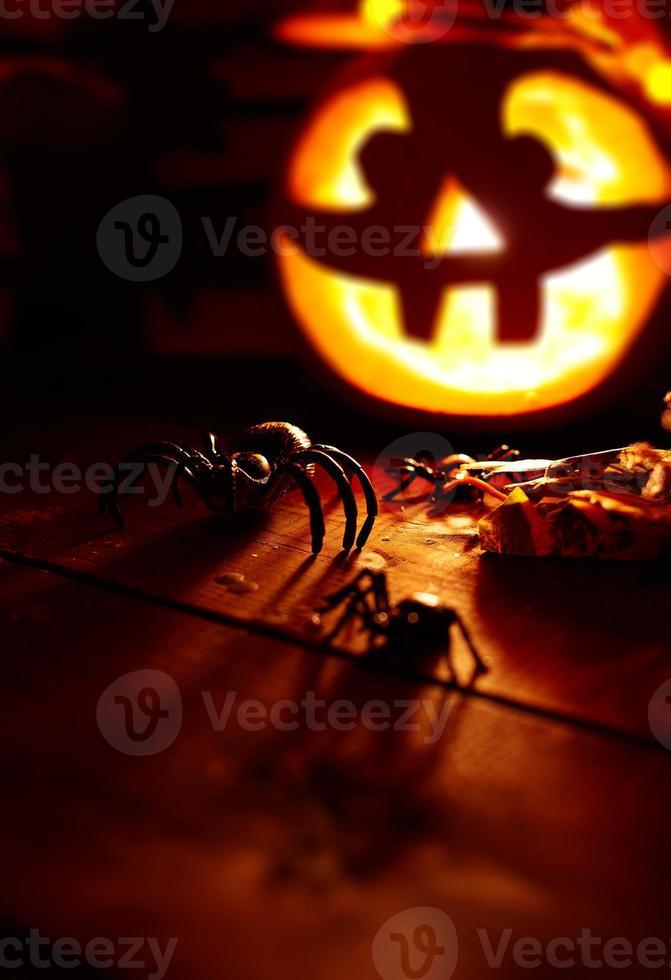 aranhas do dia das bruxas foto
