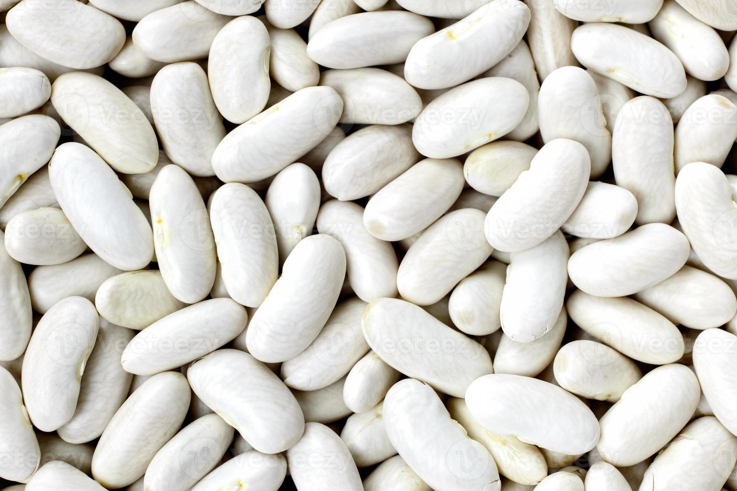 texturas de feijão azul marinho, feijão branco, ervilha branca, rim branco ou feijão cannellini foto