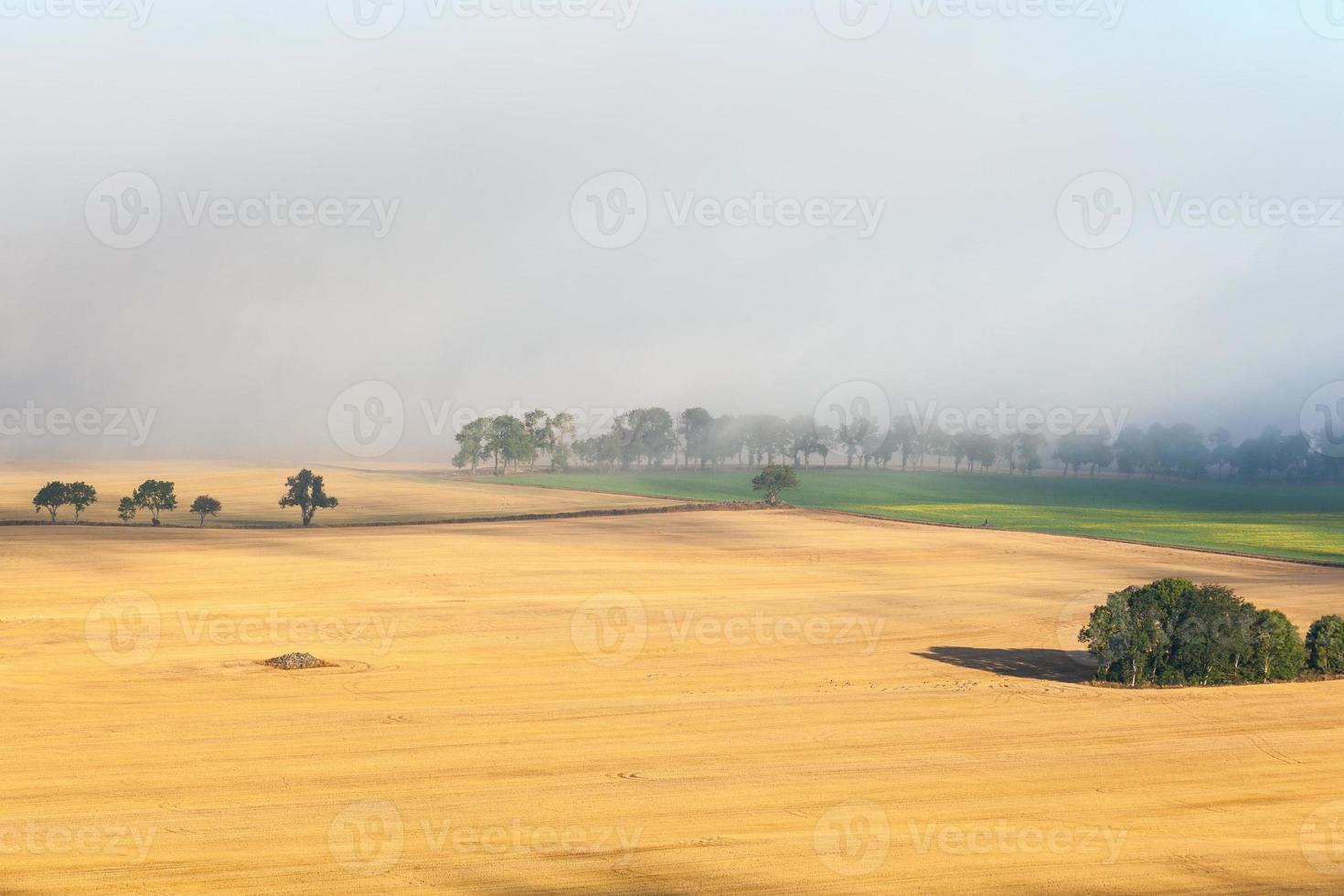 vista da paisagem rural foto