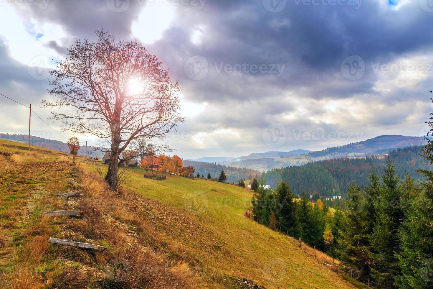 paisagem por do sol outono foto