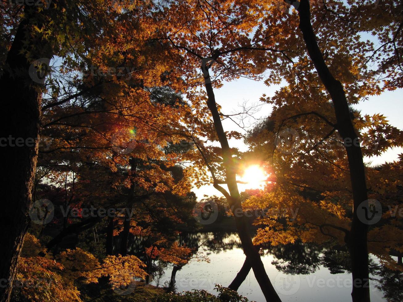 paisagem cheia de kyoto foto
