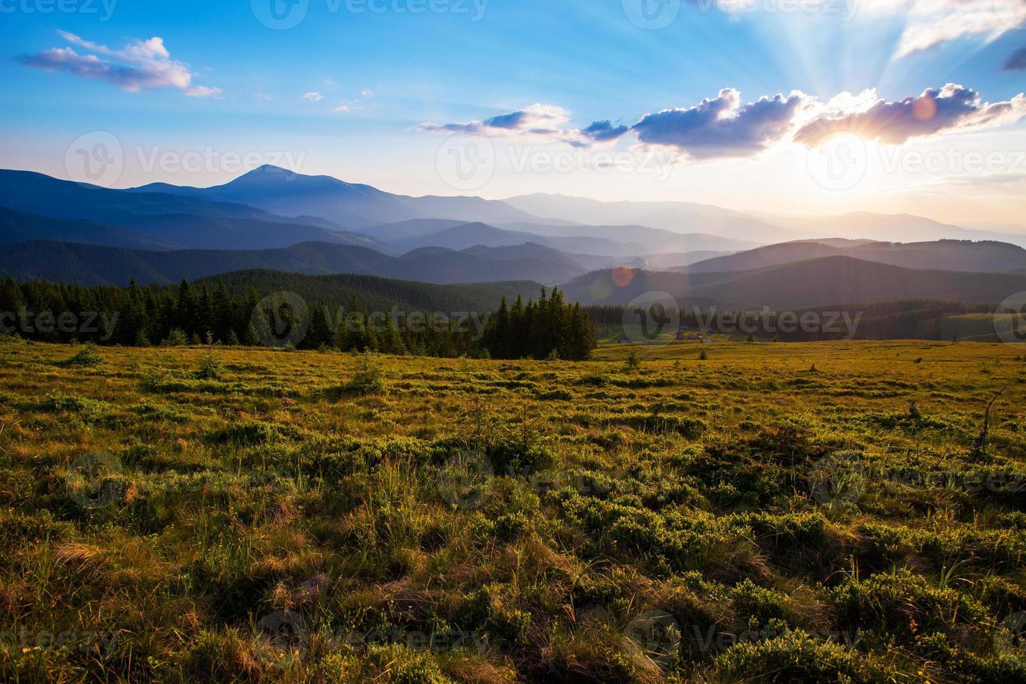 paisagem colorida do verão foto